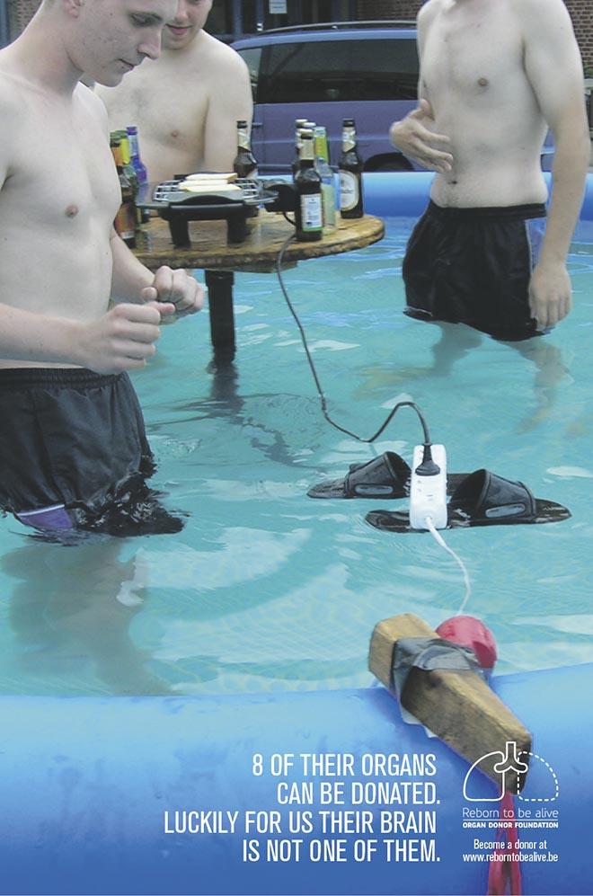 reborn-meme-pool