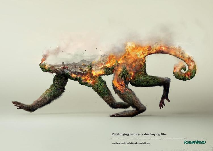 destroying-nature-robin-wood-1